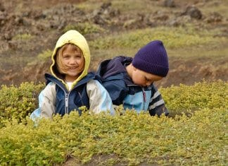 Brother and sister playing in Iceland lava field during family vacation
