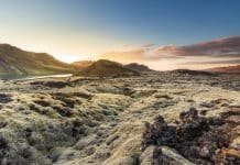 Reykjanes Peninsula Iceland lava fields covered in moss