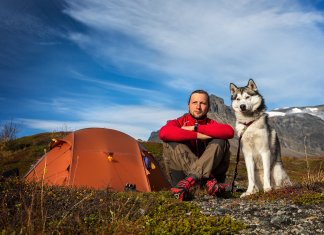 Pet Friendly Iceland Campsites