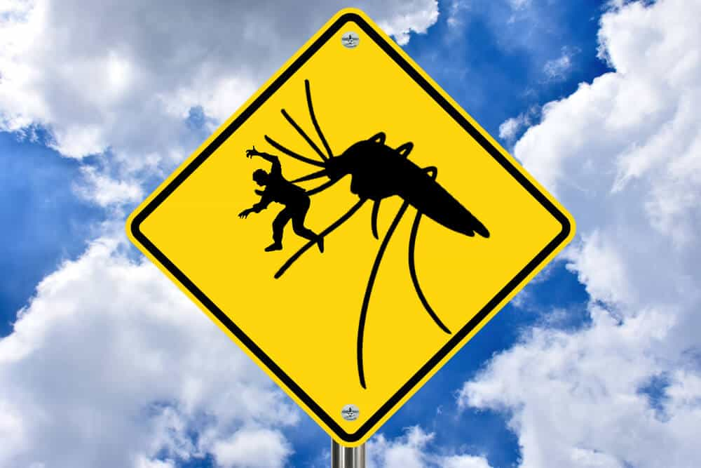 Warning sign about Mosquitos in Iceland are improbable