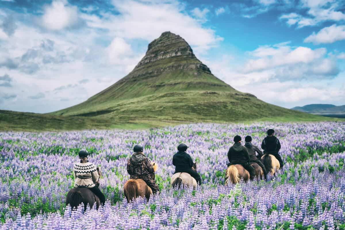 Day tours in Iceland to Snaefellsnes peninsula are popular